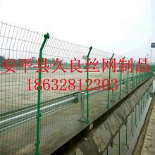 厂家定做500丝养殖围栏浙江铁丝网围栏现货绿色框架护栏网
