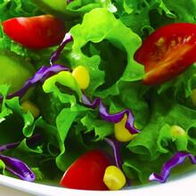 人们对无公害蔬菜的迫切需要与日俱增