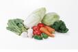 蔬菜配送中心绿色配送有机农场蔬菜配送康来蔬菜配送