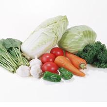 同城蔬菜配送绿色蔬菜配送康来富蔬菜配送