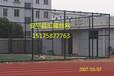 网孔球场围网~50网孔球场围网~浸塑隔离网价格