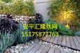 花園綠化石籠網~濟南花園綠化石籠網~石籠網制造商