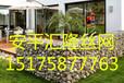 裝飾石籠網~綠化裝飾石籠網~石塊藝術墻設計方案