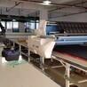 温州高崎全自动拉布机铺布机高端拉布机