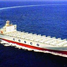 蓝海豚供应链美国FBA海运服务