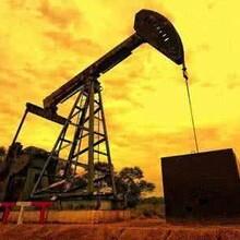 济南美原油期货实盘代理条件图片