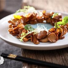 高清美食菜品菜谱摄影中西餐美食摄影图片