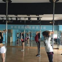 常州韩国明星舞,常州日韩MV舞蹈培训