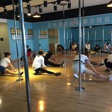 常州新北区万达哪有学钢管舞培训,常州九域舞蹈,