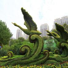 绿雕造型,园林绿化雕塑图片