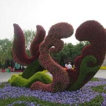 成都绿雕厂,仿真植物造型,雕塑图片