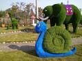 节日装饰雕塑,景观小品,仿真绿化雕塑图片