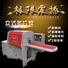 龙岩长汀鼎圣有限公司提供功率小性能稳定的原木多片锯