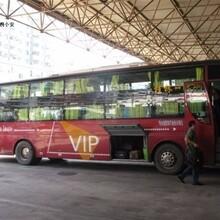 南京到福鼎长途卧铺直达大巴车预定票图片