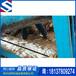 供应劈木机1米1.2米1.5米木材切片机