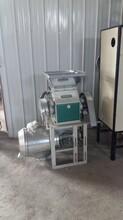 山东厂家批发全自动小麦磨面机小麦面粉机产量如何
