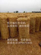 稻草编帘机多少钱一台草帘编织机厂家直销图片