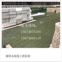 四川省HDPE排水板优选美鑫塑胶制品植草格洽谈电话:0731-850673图片