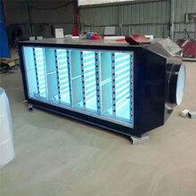 深圳废气处理UV灯管图片