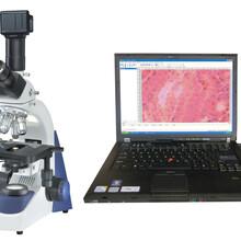 SA3300-DPC数码显微镜