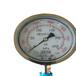 压力表(HY)现货供应HY100-HYC300
