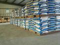 竹鼠养殖条件和竹鼠专用预混料图片