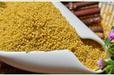 陕西供销网提供天然无公害营养养胃陕西特产小米