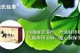 重庆山楂银杏代用茶