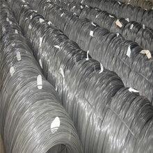 304不銹鋼線材BA面晾衣防盜專用不銹鋼鋼絲繩無磁耐磨廠家直銷圖片