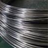齐发国际亮面304不锈钢弹簧丝弹簧用微丝东莞不锈钢线材专售