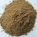 供应新西兰肉骨粉,饲料,饲料原料