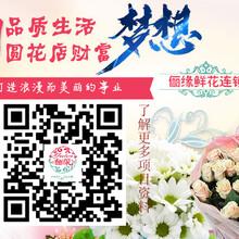 芜湖韦爵爷花店加盟引领时尚鲜花品牌