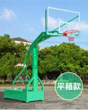 广西贵港篮球架移动式篮球架标准南宁飞跃体育图片