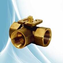 VBI61.50-40西门子三通电动球阀40kg球阀图片