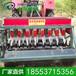 蔬菜精量播種機.精量播種機特點.蔬菜種植機械