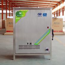 商用燃气蒸汽发生器MST-100蒸汽机豆腐煮浆机酿酒蒸馒头机然气节能锅炉