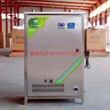 商用全自动高压蒸汽发生器节能燃气锅炉不锈钢蒸汽机