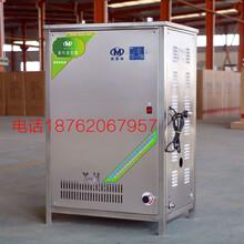 商用蒸汽发生器海鲜加工环保燃气锅炉节能燃气蒸汽机