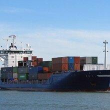 香料调味品海运新加坡包清关包税送货上门