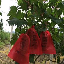 威骏农夫一品农用生态环保葡萄袋防水透气水果套袋