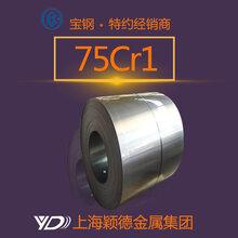 颖德75Cr1热轧钢带供应可加工宝钢正品现货热销价格优惠