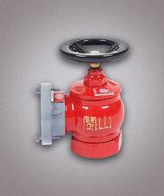 旋转稳压型室内消火栓