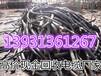 日照电缆回收日照电缆废旧电缆回收(价格.报价)