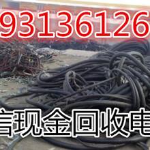 洛阳废旧电缆回收《市场消息》洛阳高价回收电缆