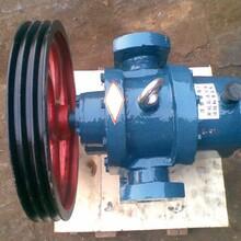 河北LCW罗茨泵铸铁皮带罗茨泵输送日化牙膏图片