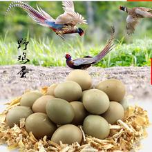 野鸡蛋农家散养新鲜野鸡蛋草鸡蛋七彩山鸡蛋营养土鸡蛋