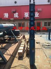 潜水深井泵高扬程厂家图片