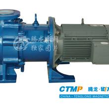 腾龙泵阀IMD-F重型氟塑料磁力泵