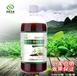 em菌种植原液植物营养液坐果提高品质