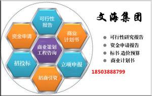 河南省代写可行性报告负责本地项目